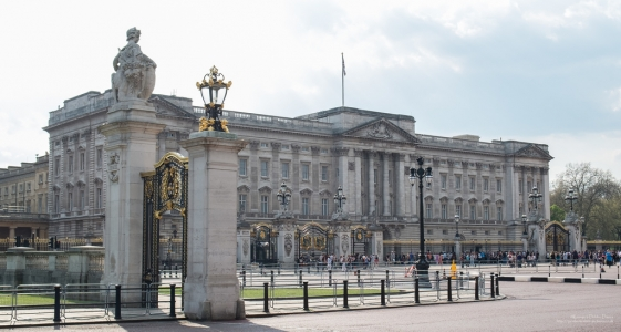 London (Buckingham Palace)