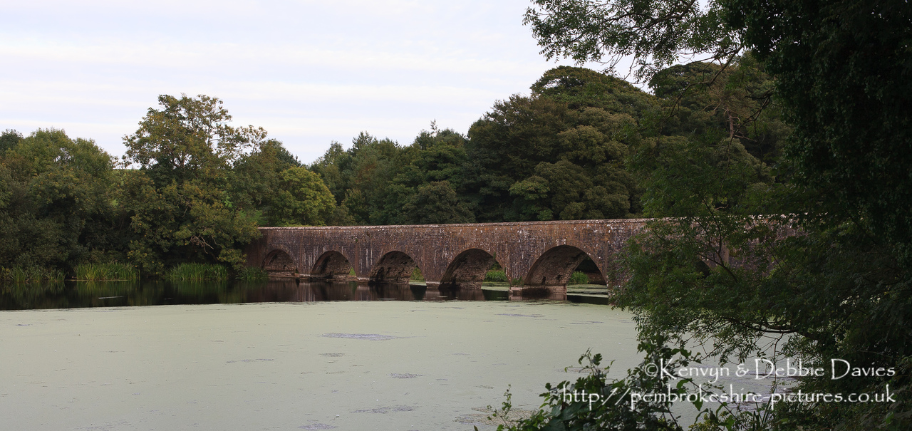 The eight arch bridge at Stackpole Court was built in 1797 to connect the mansion and Home Farm to the New Deer Park and Stackpole Quay. It is built from limestone over a weir.