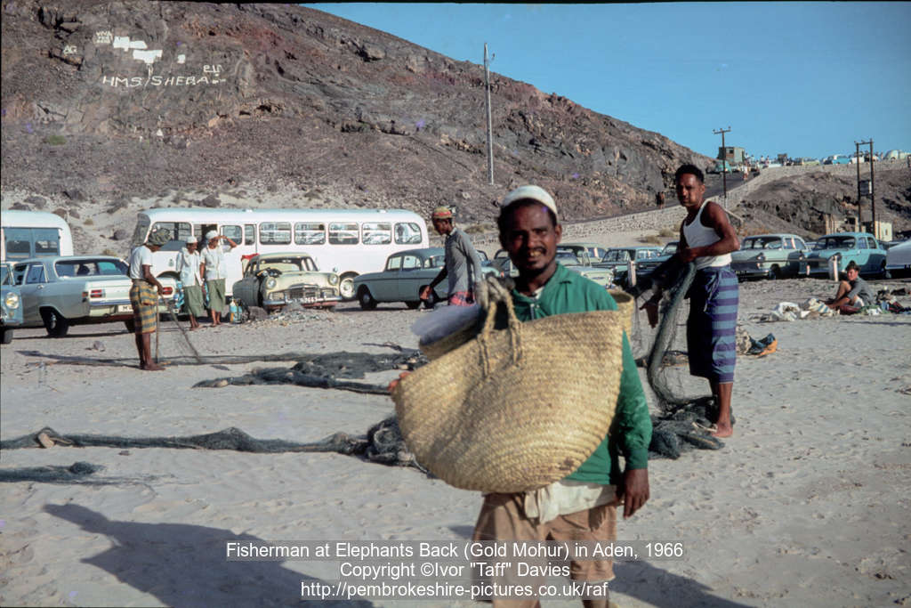Fisherman at Elephants Back (Gold Mohur) in Aden, 1966