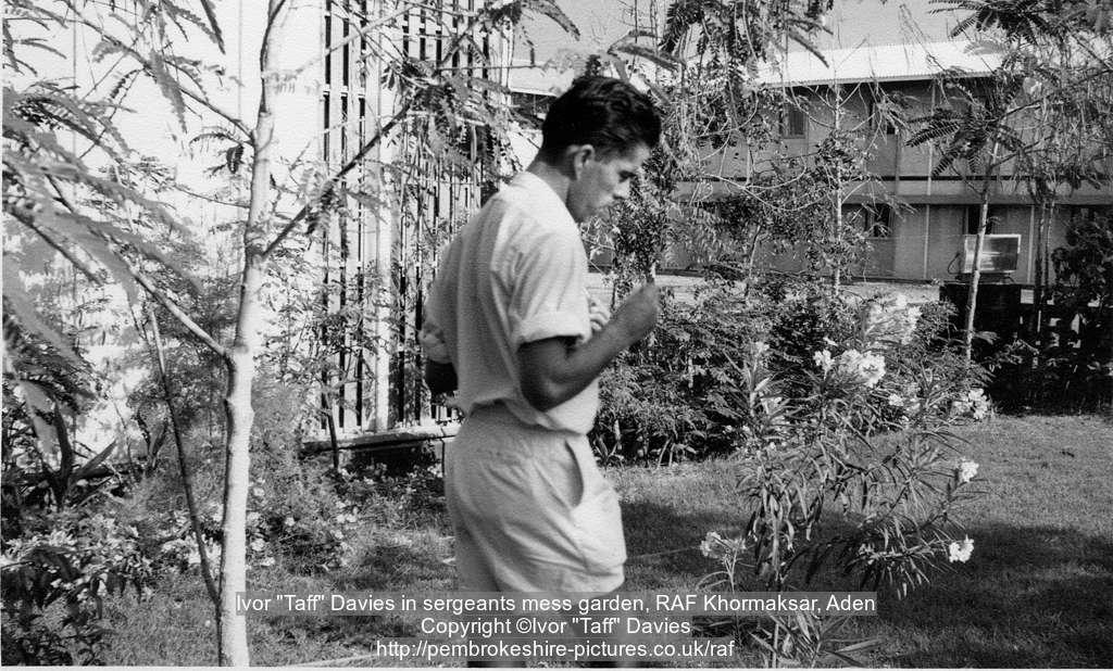 """Ivor """"Taff"""" Davies in sergeants mess garden, RAF Khormaksar, Aden"""