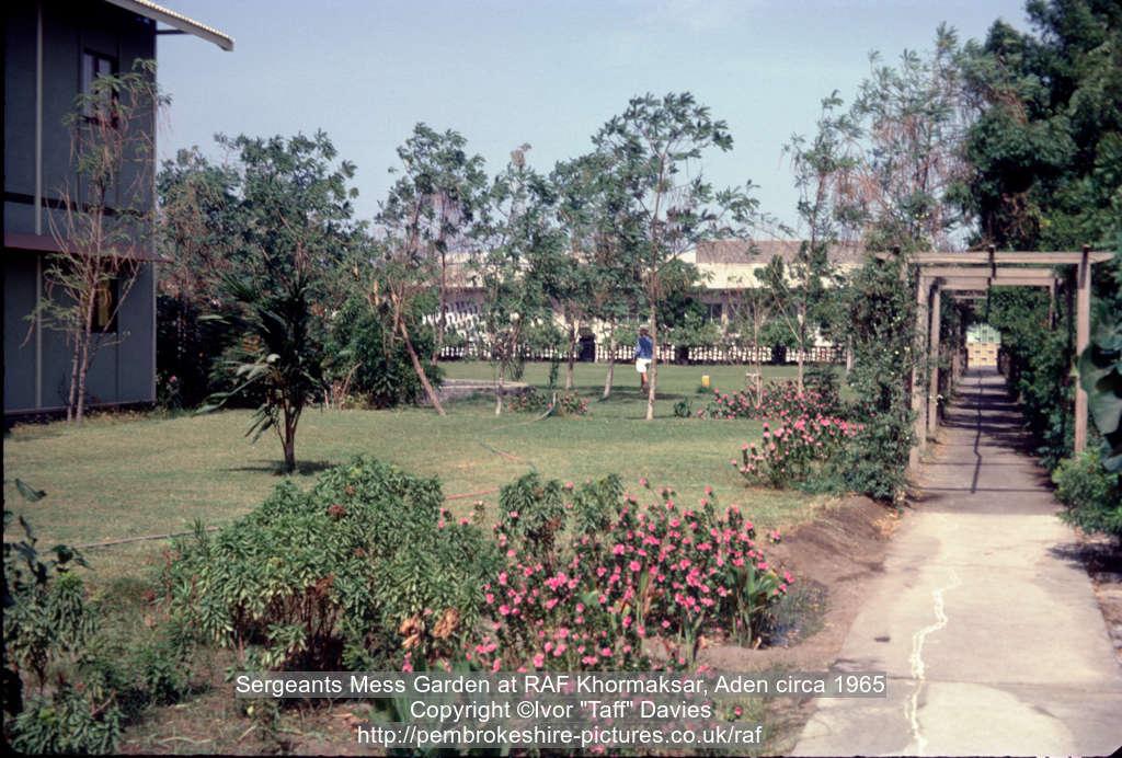 Sergeants Mess Garden at RAF Khormaksar, Aden circa 1965