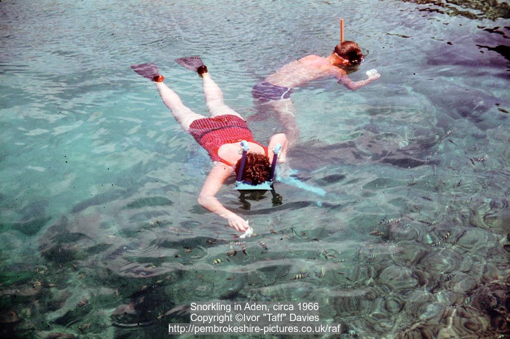 Snorkling in Aden, circa 1966