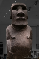 This statue, representing and ancestral figure, was possibly first displayed in the open air. It was later moved into a stone house at Orongo, the centre of a bird man cult. Low-relief designs carved on the back are associated with this cult. The statue seems to have been used in both contexts to express ideas about leadership and authority.