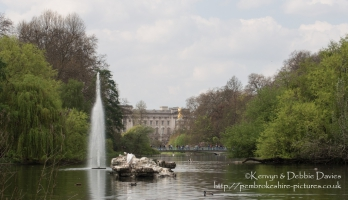 Buckingham Palace from St. James's Park, London