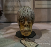 Shrunken Head in Pitt Rivers Museum, Oxford