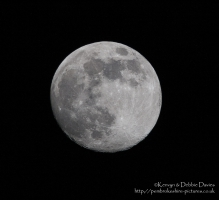 First try at a moon shot from 2005