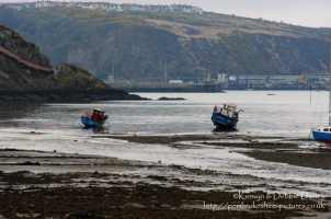 Lower Fishguard on a bleak April evening