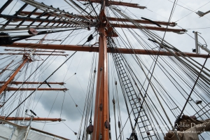 Sedov - Tall Ship at Milford Haven