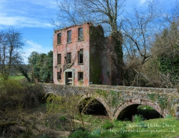 The Derelict Prendegast Paper Mill
