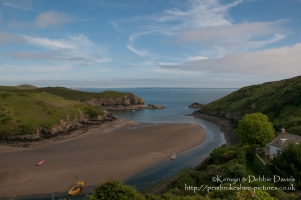 Solva in early summe