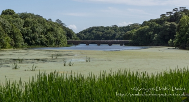 Eight Arch Bridge at Stackpole Estate, Pembrokeshire