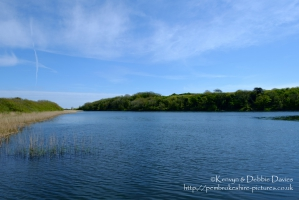 Stackpole Estate, Bosherston Lily Ponds