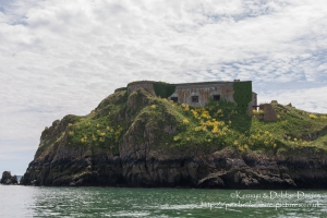 St. Catherine's Fort in Tenby was built in 1867 to prevent Tenby being used as a bridgehead for an attack on the port of Milford Haven. It is currently derellict but has acted as a fort, private dwelling and zoo!